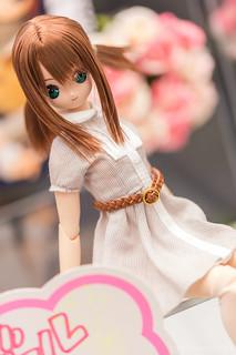 AzoneLS秋葉原_20140102-DSC_0408