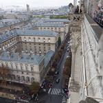 The street below, Notre Dame
