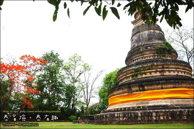 泰冒險,泰有趣-清邁 悟孟寺(Wat Umong Temple)