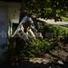 Pipa repleta de gas, se vuelca al frente de una vivienda en el municipio de Tantoyuca