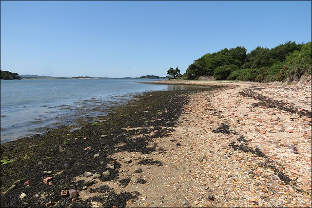 The coast of Brownsea Island