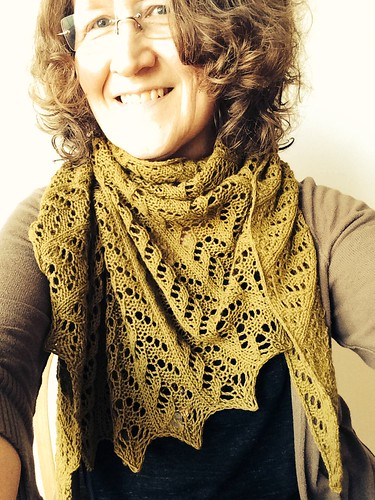 Plover Shawl