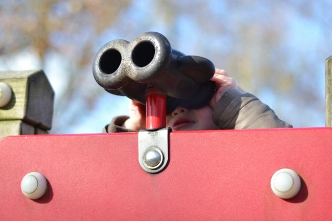 binoculars_woodland
