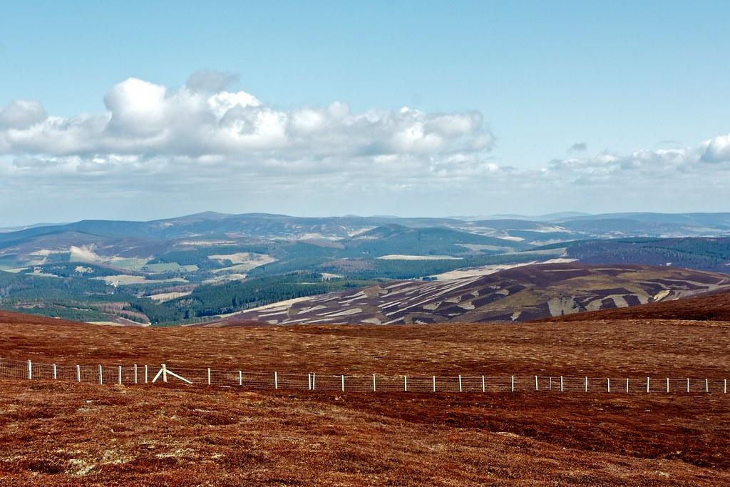 Aberdeenshire Hills