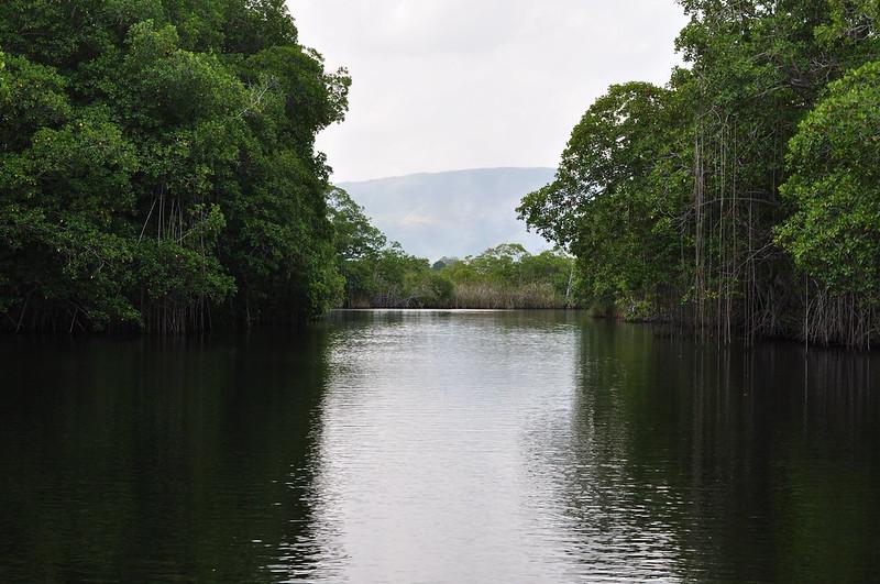 Río Negro en Jamaica
