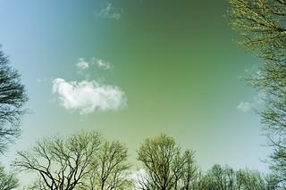 Kronepark, Am Nockherberg | Roland Krinner