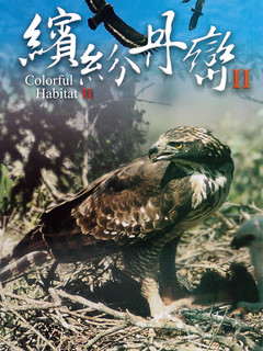 繽紛丹巒II影片封面。(圖片來源:南投林管處)