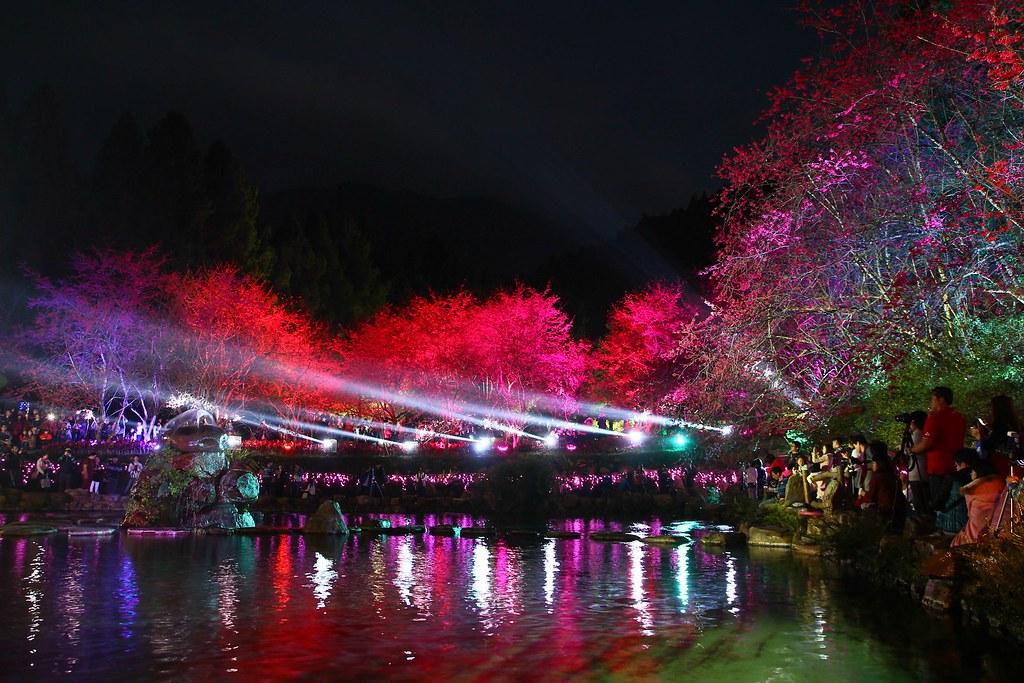 九族櫻花祭 (116)
