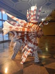 Giant Lionfish