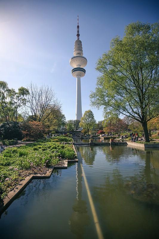 Park Pflanzen und Blumen