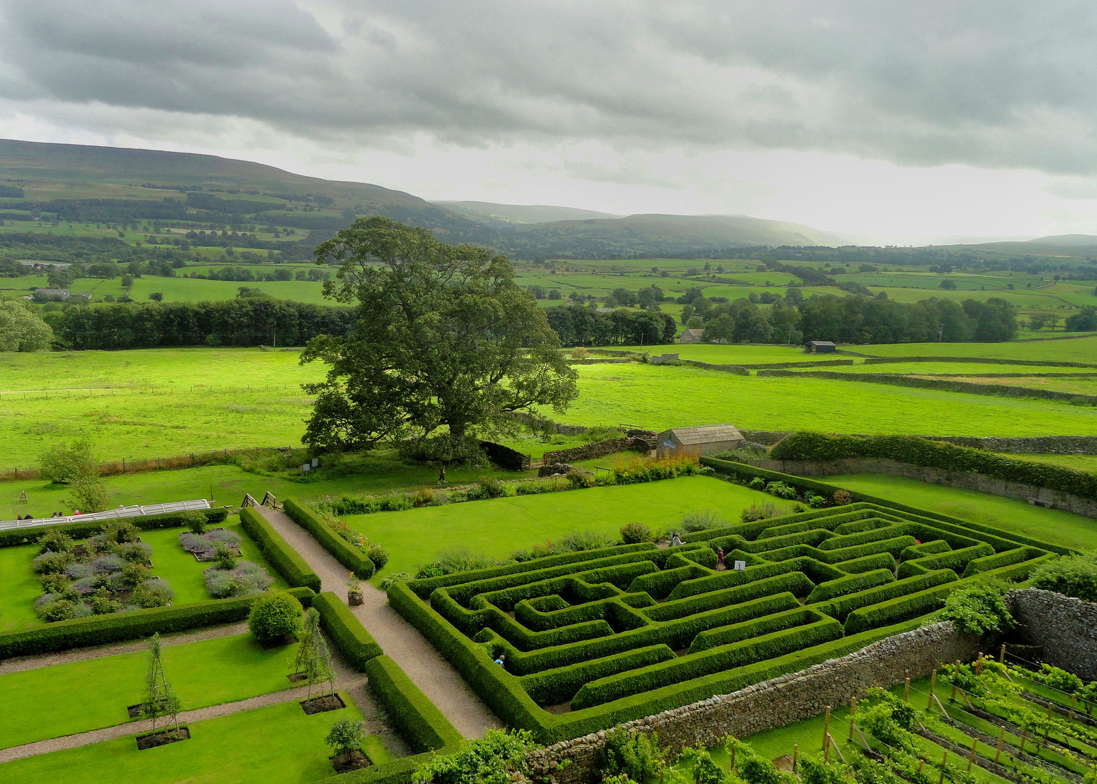 Bolton Castle Maze, Wensleydale. Credit Peter Hughes