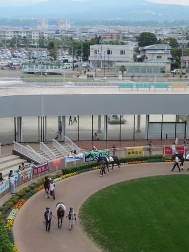 函館競馬場でのパドックと市電写真
