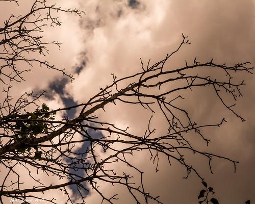 southcarolina unitedstates nature clouds sundown sunset nikon