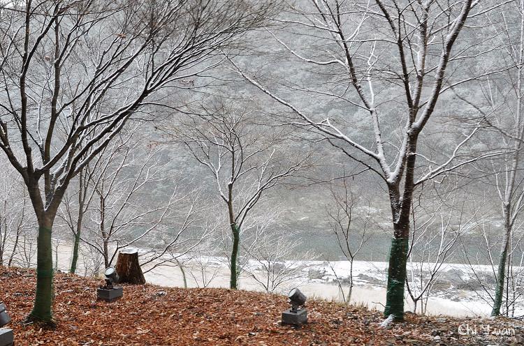 嵯峨野觀光鐵道-冬雪26.jpg