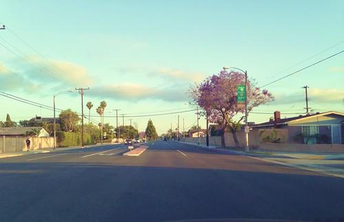 My neighborhood.