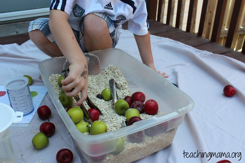 Apple Sensory Bin (Photo from Teaching Mama)