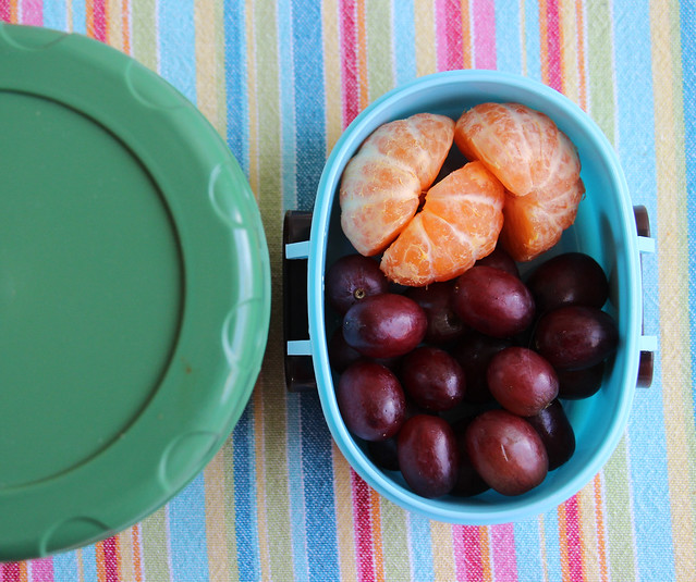 Preschool Thermos and Fruit Bento #520