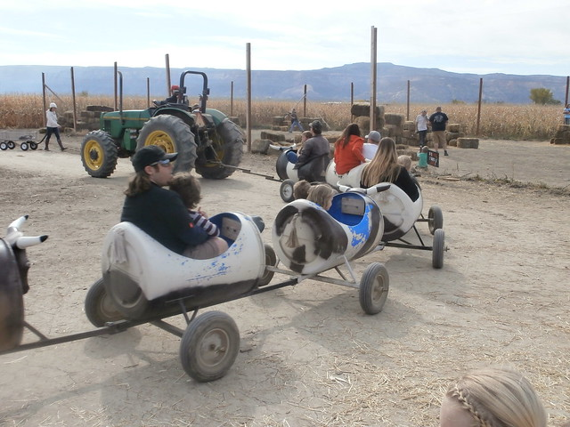 Colorado Halloween Activities - Studt's  tractor pulled ride