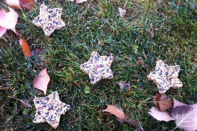Birdseed Stars