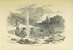 """British Library digitised image from page 481 of """"Te Ika a Maui, or, New Zealand and its Inhabitants ... Second edition, etc"""""""