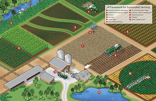 A Framework for Sustainable Farming Infographic