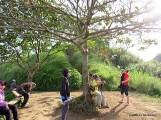 mt-batulao-trail.jpg