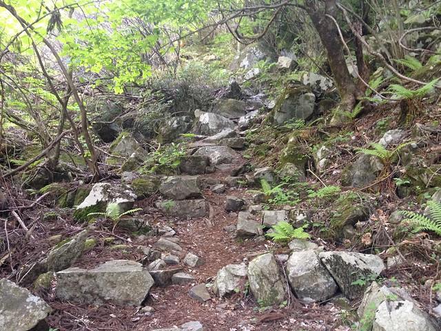 高賀山 登山道 石段