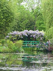 Kayla-Monets-Garden