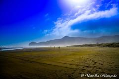 Piha Beach - New Zealand