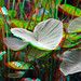Plants Avifauna 3D by wim hoppenbrouwers