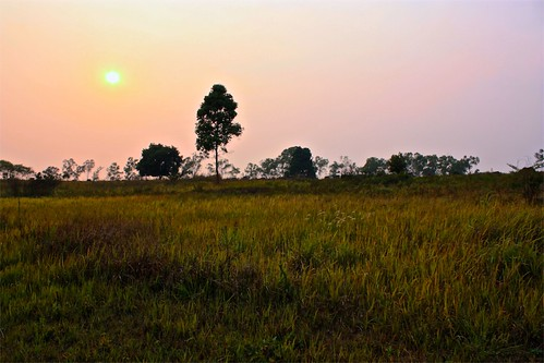 sun setting over the grassy field nearby Plain of Jars site 1