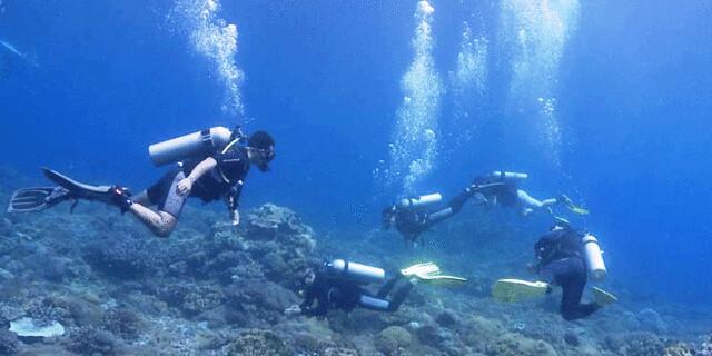 irfan-diving