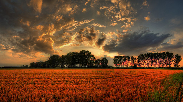 glory in heaven ( Explore )