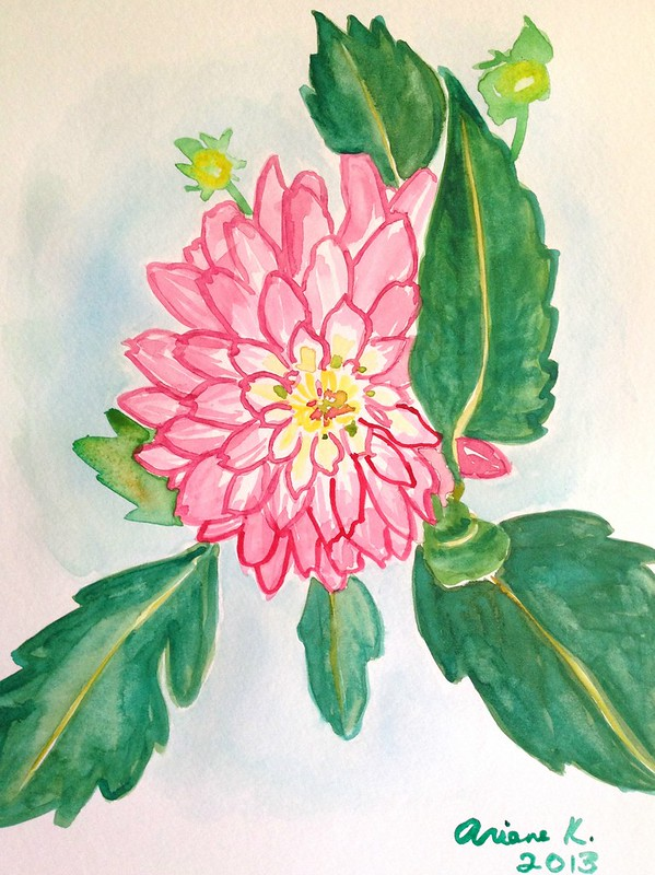 Dahlia watercolour