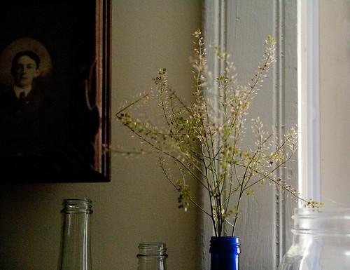 kris-flowers13