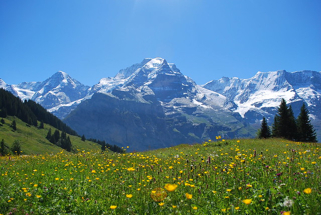 Beautiful Scenery of Murren