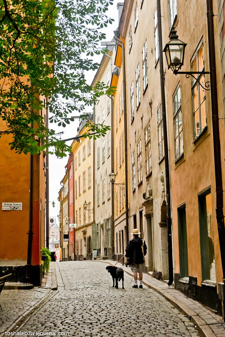 Stockholm_Streets-45