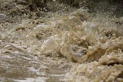 Colorado water turbulence