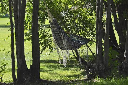 autumn trees canada herbst manitoba hammock baum hängematte grunthal