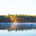 watercolor at walden pond by -Little Voice-