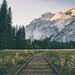 Yosemite by Jared Atkins