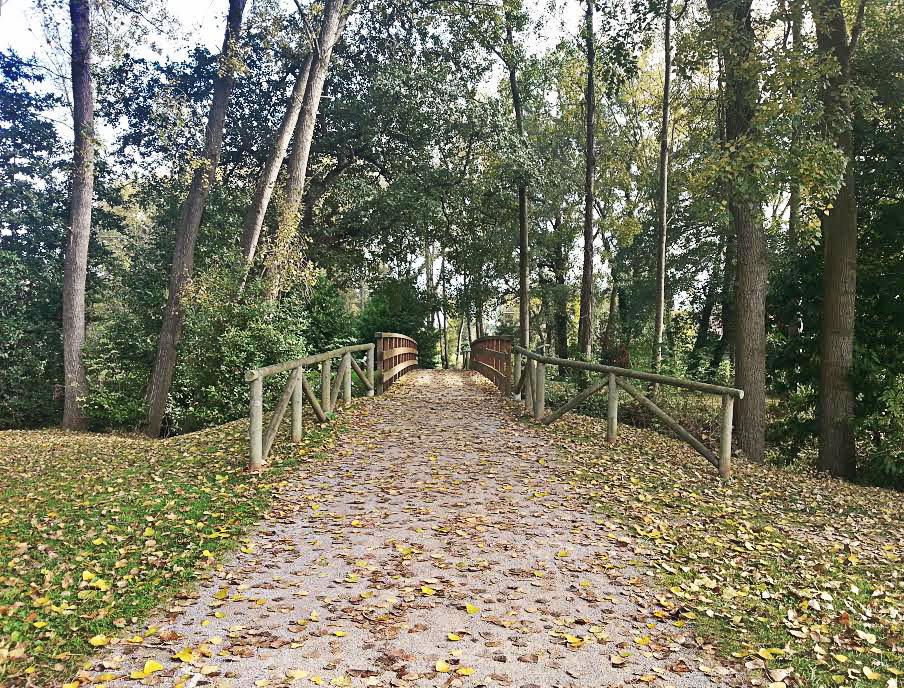 puente_casa