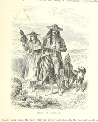 """British Library digitised image from page 335 of """"A Journey across South America, from the Pacific Ocean to the Atlantic Ocean [Translated from the French by E. Rich.] Illustrated with engravings ... drawn by E. Riou, and.. maps, printed in colours, etc"""""""