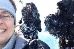selfie me suzie and skippy