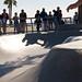 Venice Beach 11-24-13 3