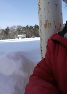 グランドの雪