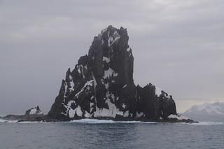 063 Elephant Island - Point Wild