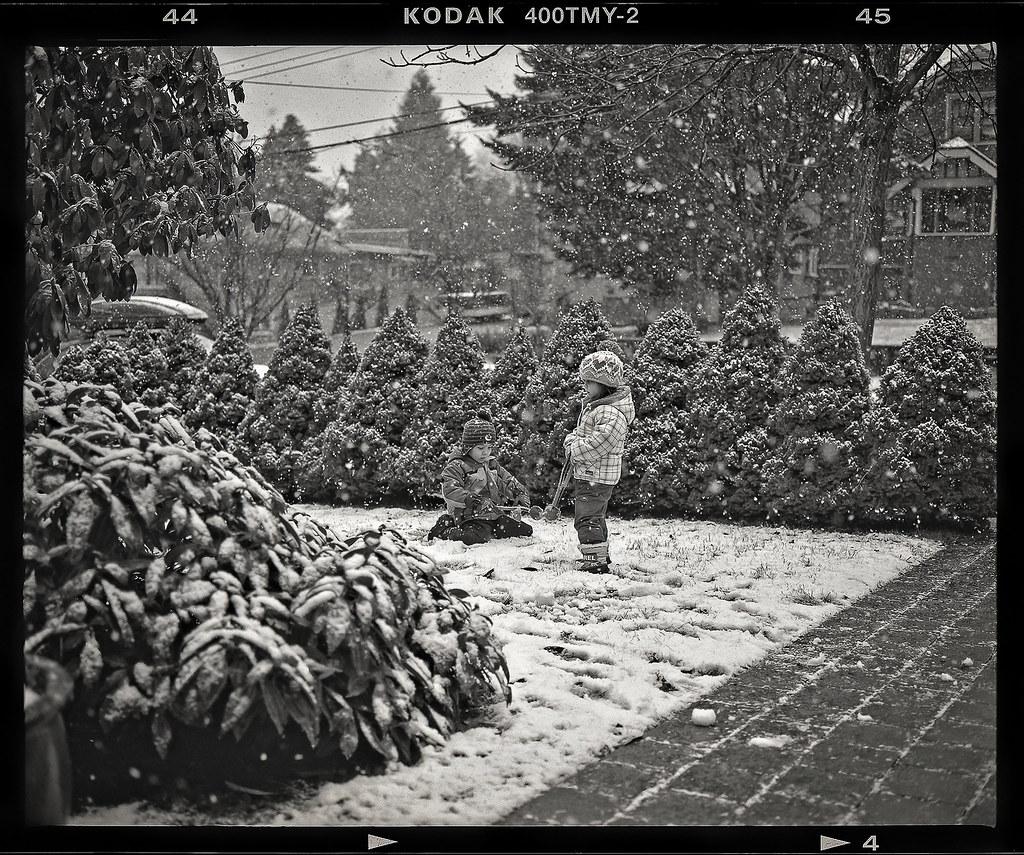 February Snow 2014 5.jpg