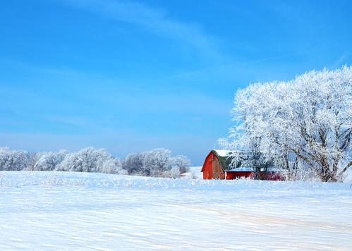 blue winter red sky sun white snow field sunshine wisconsin rural canon landscape frozen frost day wi redbarn lodi lodiwi t5i