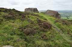 The Roaches to Back Forest (310)